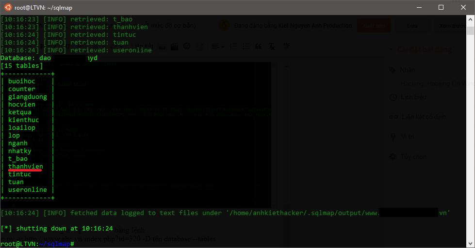Khai thác lỗ hổng SQL Injection sử dụng sqlmap (Ở mức độ cơ