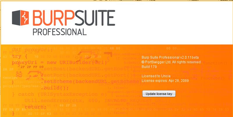 Brup Suite Professional v2.0.11beta Full Crack