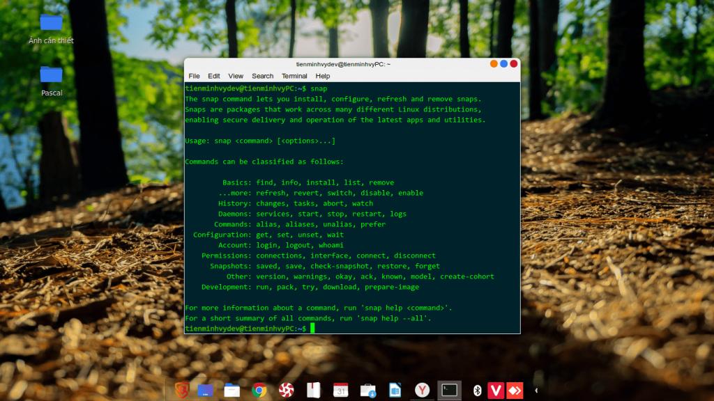 Một số câu lệnh về snap trên Ubuntu